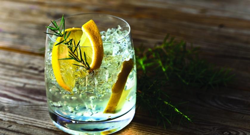 Gin tonic basis